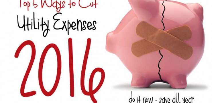 Top 5 Ways to Cut your Expenses in 2016